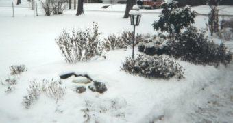 Winter_Scene.jpg